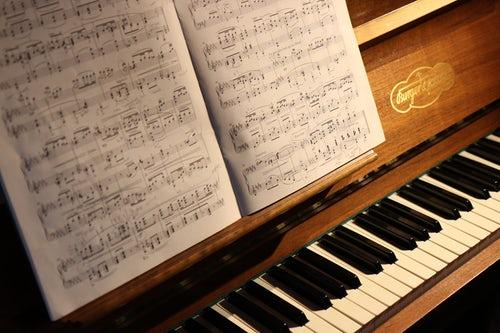 逆さま 少女 の ため の ピアノ ソナタ